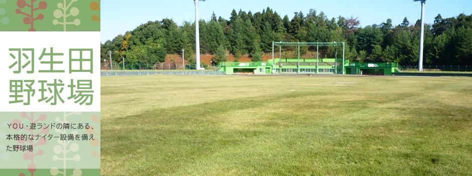 平成27年3月に西蒲区にオープンしたばかりの人工芝サッカーコート。新潟市潟東サルビアサッカー場